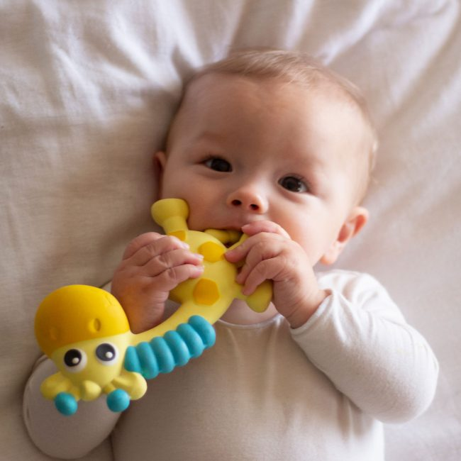 0186970-Squeak-and-Soothe-Natural-Teether-T2